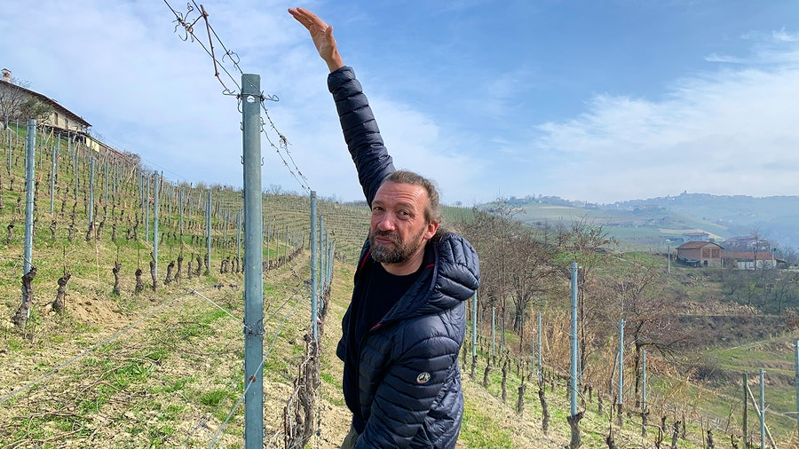 To understand differences between sites, agronomist Giovanni Bigot examines factors such as how vigorously each vine grows, how much fruit it produces, how many leaves it has and how healthy the grapes are.