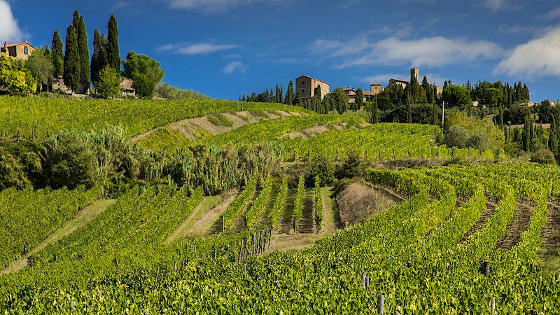8 Delectable Chianti Classicos Up to 92 Points