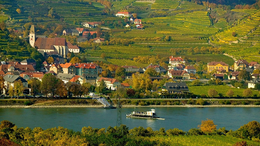 Spitz is one of several villages in Austria's Wachau region where Domäne Wachau harvests Grüner Veltliner.