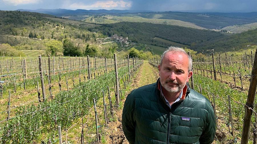 Michele Braganti walks the hilly vineyards above Monteraponi.
