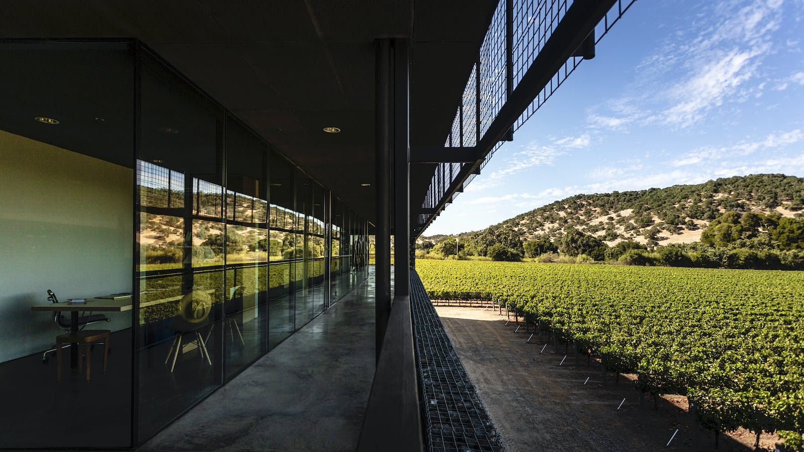 At Dominus Estate, a Green Oasis in Drought-Wracked Napa Valley
