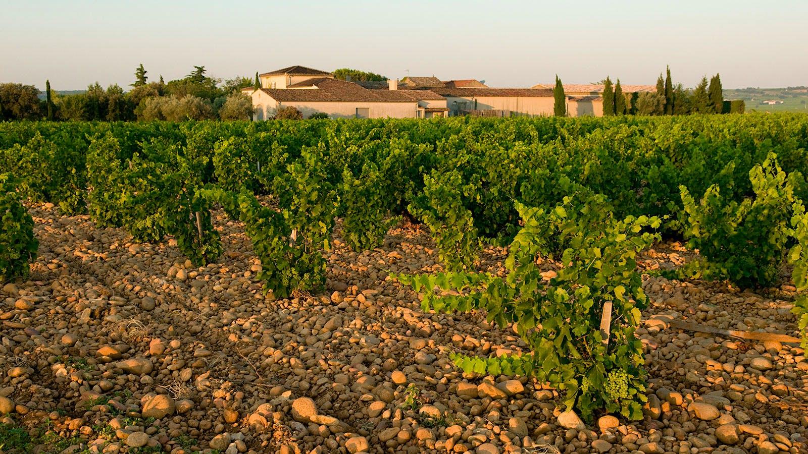 8 Côtes du Rhône Values Up to 90 Points