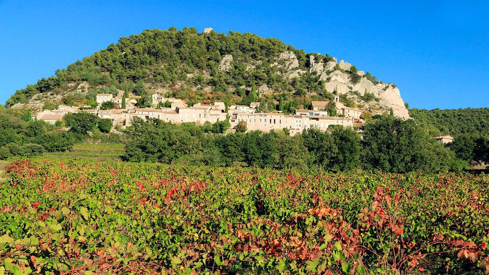 8 Captivating Rhône Rosés Under $20