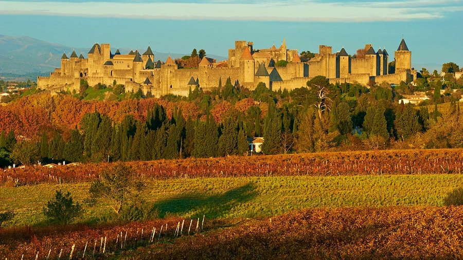 The medieval stone fortress Carcassonne with vineyards nearby