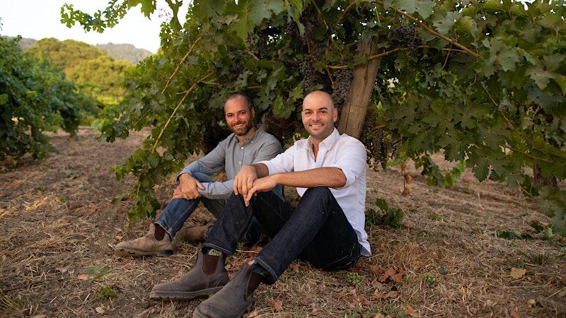 Video Series: In the Vineyard at MacDonald