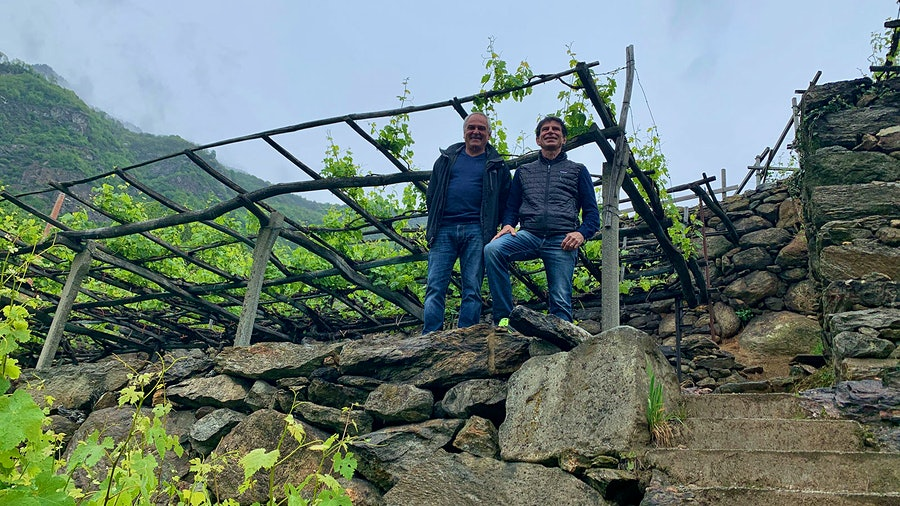 Andrea and Roberto Ferrando have taken on the challenge of continuing to farm pergola-trained Nebbiolo on the ancient terraces of the Carema appellation.