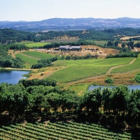 Chalk Hill's estate spans an impressive 1,300 acres, with vines planted across 300 acres within the Chalk Hill AVA in Sonoma County.12 Diverse and Delightful Sonoma Wines