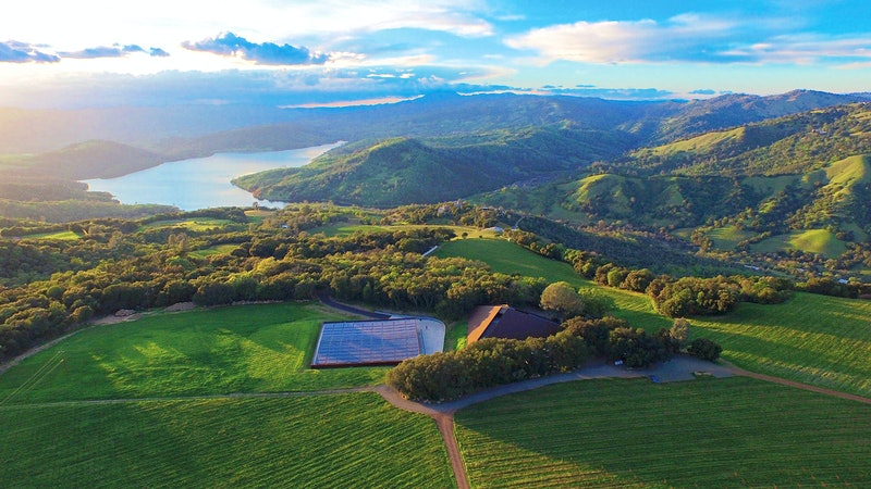11 Exciting and Diverse Napa Wines