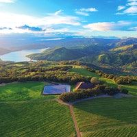 Located on Napa Valley's Pritchard Hill, Chappellet has a long track record of noteworthy wines made from Bordeaux grapes like Merlot.11 Exciting and Diverse Napa Wines