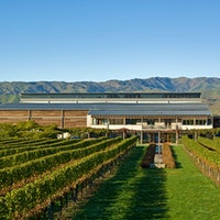 Winery Villa Maria harvests a range of grapes from its estates in Marlborough, Hawkes Bay, Auckland and Gisborne.8 Lively Marlborough Sauvignon Blancs Under $20