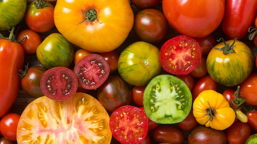 Through early fall, a wide range of heirloom and hybrid tomato varieties suited to different dishes are available at markets and farm stands, including Brandywine, Black Cherry, Green Zebra and more.