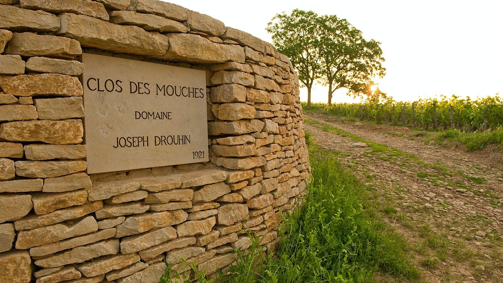 Joseph Drouhin's Beaune Clos des Mouches Turns 100