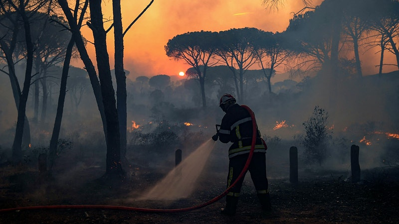 Wildfires Damage Wineries and Vineyards in Provence