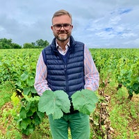 Large-leafed Aligoté lost favor in Burgundy because it is too vigorous, says Domaine de Villaine manager Pierre de Benoist, but it lived on in Bouzeron, where producers have shown the quality it can reach when given the attention it needs.Burgundy's Other White
