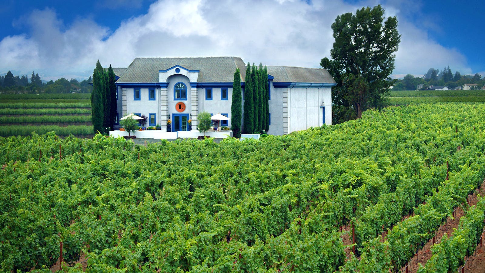 Exclusive: Paso Robles' Justin Vineyards and Winery Buys Napa's Lewis Cellars