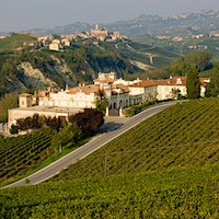 Piedmont's Aldo Conterno has about 60 acres of vineyards.Special Edition: 36 Classic and Outstanding Barolos