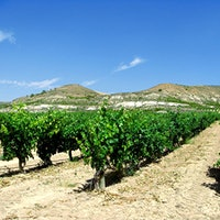 Bodegas Resalte de Peñafiel makes noteworthy Tempranillos from its nearly 200 acres of vineyards in Spain's Ribera del Duero region.7 Charming Spanish Reds for $30 or Less