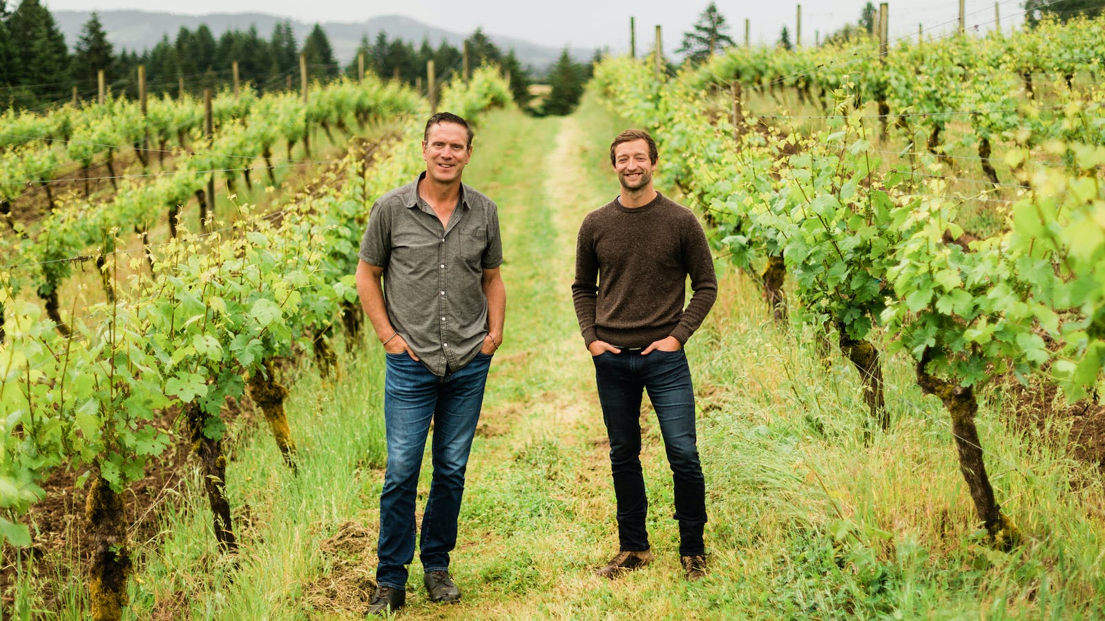 Drew Bledsoe and Winemaker Josh McDaniels Buy 80-Acre Oregon Pinot Noir Estate