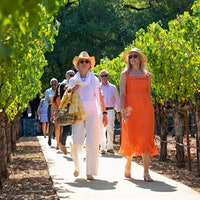 Guests stroll through a vineyard at the Music Festival for Brain Health at Staglin Family Vineyard in Napa Valley.OneRepublic Headlines Staglin Family's Music Festival for Brain Health, Raising $7.5 Million