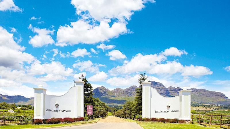 Ernie Els Wines Owner Buys Neighbor