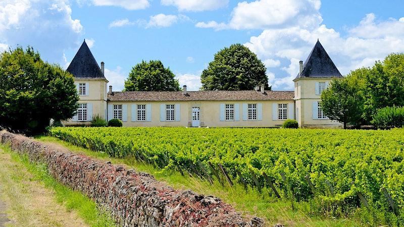 Bordeaux's Liquid Gold Country