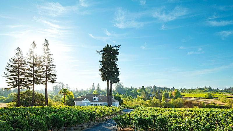 California's Chardonnay Heartland