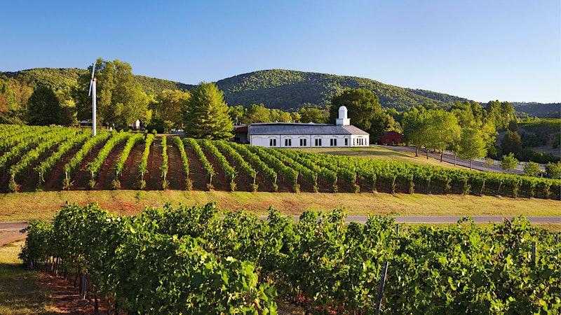 Virginia's Wine Dominion