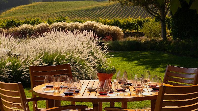 California Pinot Noir's Top <em>Terroirs</em>