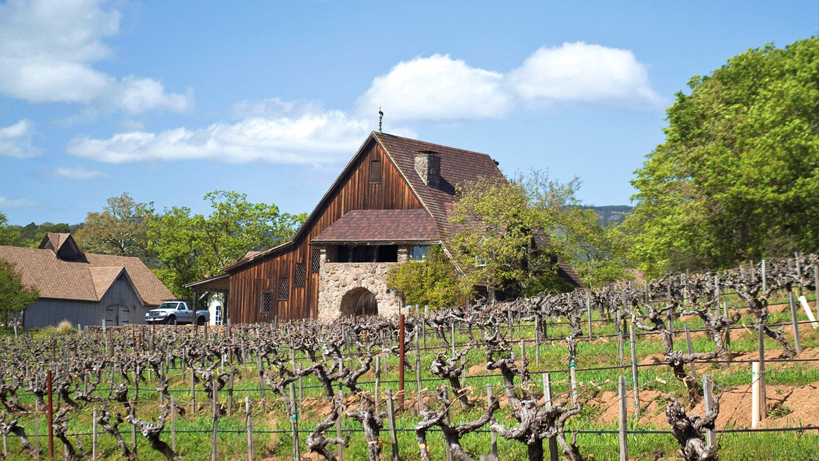 50 Top Sonoma Producers