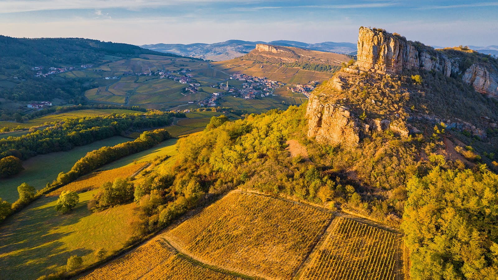 Alphabetical Guide to White Burgundy