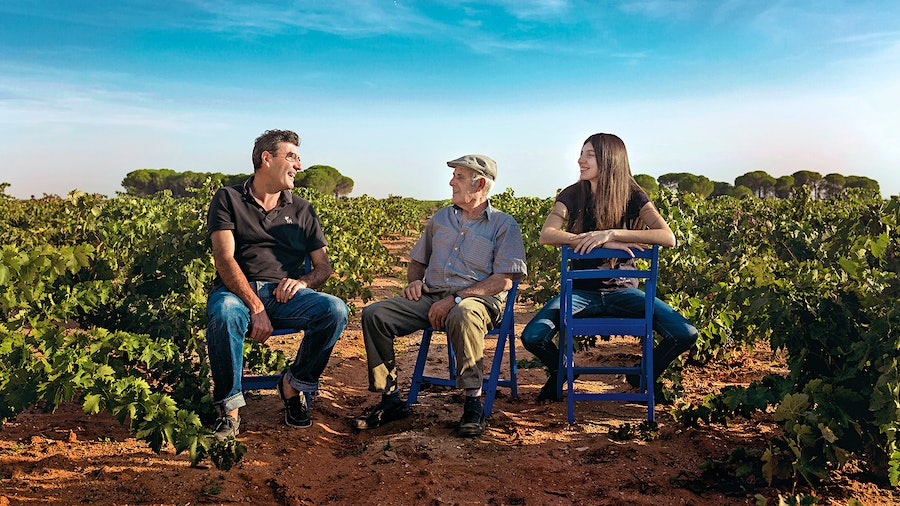 Volver's Rafael Cañizares (left) relaxes amid the old vines of his Alicante bodega with his father, José Maria, and daughter, Sofia.