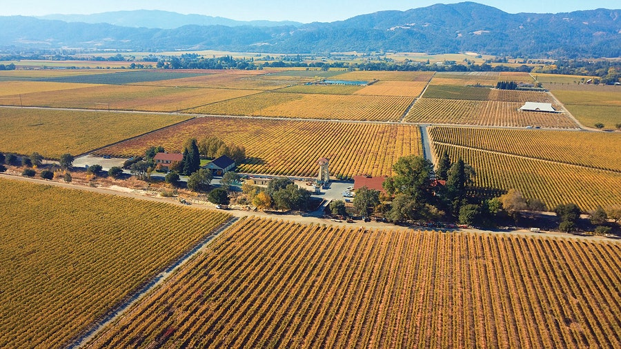 Adobe Road sources Cabernet from the Beckstoffer Georges III Vineyard.