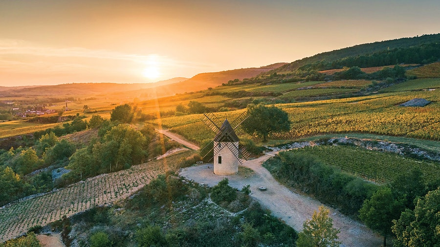 Santenay, one of the Côte de Beaune's top regions for value, yielded a number of outstanding examples in 2018.