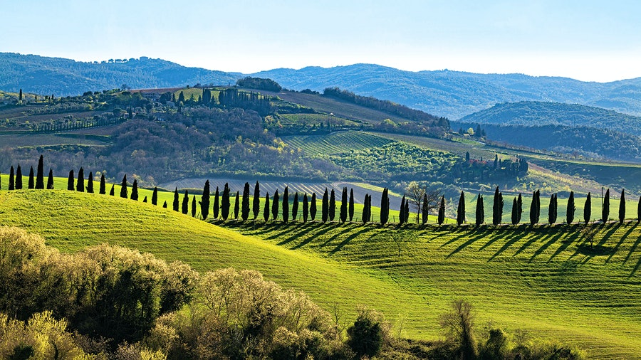 The Montosoli hill shined bright in 2016, yielding a quintet of classic Brunellos from some of Montalcino's top estates.