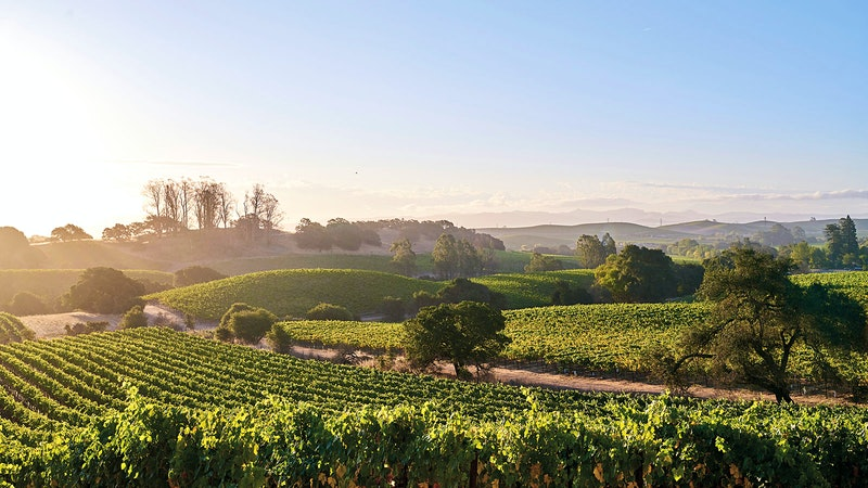 Alphabetical Guide to California Chardonnay