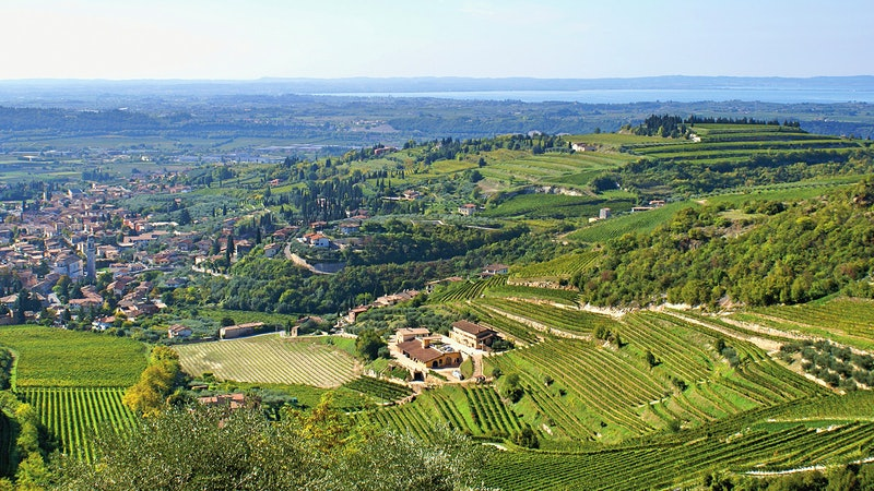 Alphabetical Guide to Amarone